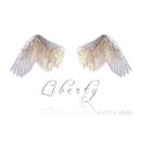 Liberty/ISSEI AIR