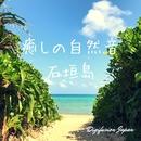 癒しの自然音 石垣島 自律神経に優しい波の音/ディジフュージョン・ジャパン
