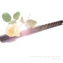 Solo Dragon-voiced Flute / Classics & My Favorite Songs Vol.4/工藤高義