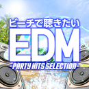 ビーチで聴きたいEDM -PARTY HITS SELECTION-/SME Project