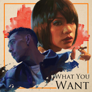 What You Want (feat. IO)/AWICH