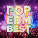 POP EDM BEST/SME Project