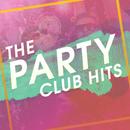 THE PARTY CLUB HITS/SME Project