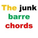 The junk barre chords/The junk guitar boy