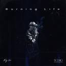 Burning Life/Ry-lax