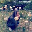 スキャットさんの妄想音楽図鑑1/スキャット後藤
