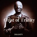 INSANITY/Geist of Trinity