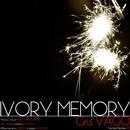 IVORY MEMORY/Gris VAGO