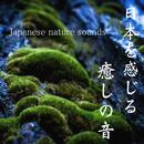 日本を感じる癒しの音/吉直堂