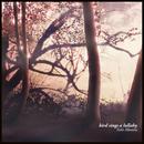 bird sings a lullaby/Yuki Murata