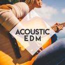 Acoustic EDM - 休日に聴きたいアコースティックカバーEDM-/magicbox
