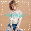 UP ON THE ROOF/SHANTI