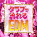 クラブで流れるEDM/Various Artists