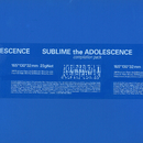 Sublime The Adolescence/Various Artists