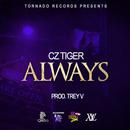 ALWAYS/CzTIGER