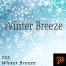 Winter Breeze/T33