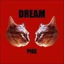 DREAM/pige