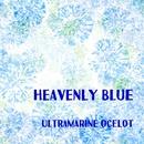 Heavenly Blue/Ultramarine Ocelot