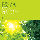 DAVID FOSTER LOVE ACOUSTIC COVERS/Super Natural