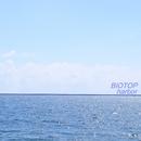harbor/BIOTOP