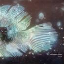 unknown error (feat. Takahiro Kido & Yuki Murata)/Anoice