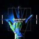 HANDS UP/HAYATO