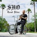 ゴミライダー/SHO