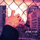 Future is Now/JUNK STAR
