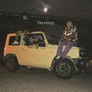 Destiny (feat. kiyo & e$k)/pige