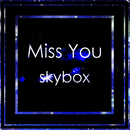 Miss You/skybox