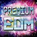PREMIUM EDM 2015/Various Artists