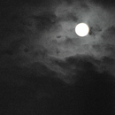 Lamp Light/Caol iLA
