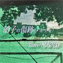 硝子の傷跡/Tony NACHI