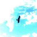 Aerial Road (feat. HOKA)/432HZ MUSIC JAPAN