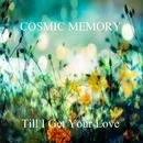 Till I Get Your Love/COSMIC MEMORY