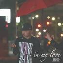 in my love/鳳雷