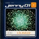 cluster/jenny01
