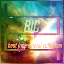 BIC:best InstruMetal collection/BIC