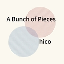 A Bunch of Pieces/hico