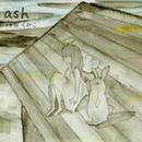 ash/森田くみこ