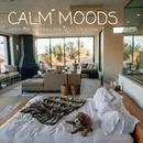 Calm Moods ~ 毎日を前向きに過ごすためのJazzy House Selection ~/Cafe lounge resort