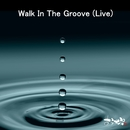 Walk In The Groove (Live at Ivy, 東京, 2020)/あらかぷ