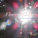 Flower of Life ~Instrumental version~/Quena