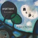 森を歩く/Anjali Band