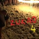 ZUKAO 4/ZUKAO