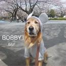BOBBYII/B&F