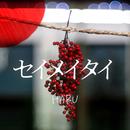セイメイタイ/HARU