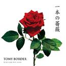 一本の薔薇/TOMY BORDER