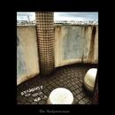 STARDUST (Remix) [feat. Ik0aN & N.Ø.I.R]/The Madpotatoman
