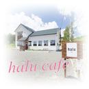 halu cafe/Aya